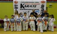 Pierwsze sukcesy młodych karateków w Wesołej - Ujazdy