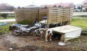 Blizne. Właściciel zostawił swe psy bez opieki, przez kilkanaście dni były bez jedzenia i wody