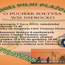 Turniej Piłki Plażowej Niebocko