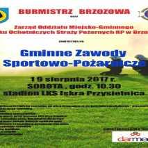 Gminne Zawody Sportowo-Pożarnicze. Brzozów 2017