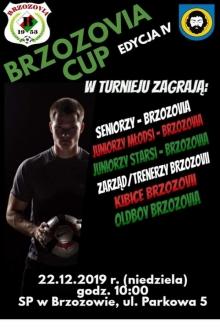Brzozovia Cup. Edycja IV